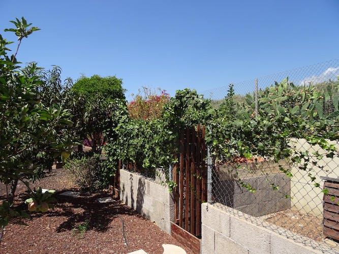 Image of property RIDI03 (39)