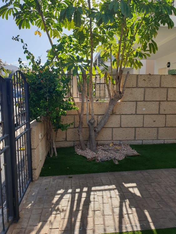 Image of property TR206 (23)